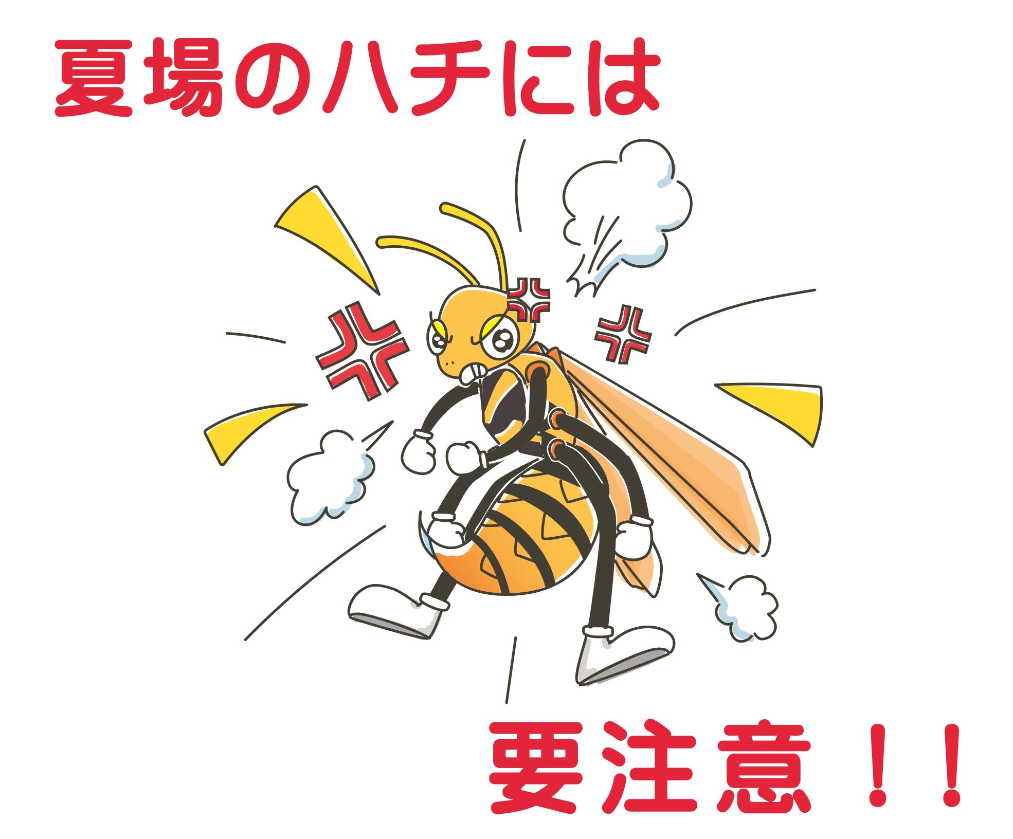 夏場のハチに要注意!! 攻撃性の高い時期は特に気を付けましょう!